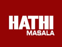 hathi masala spice exporters gujarat rajkot