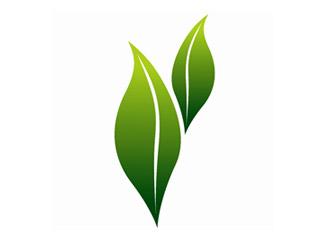 Savaliya Agri Commodity Export