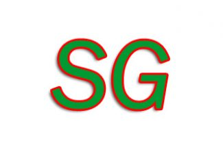 SG Export Kanpur Uttar Pradesh India