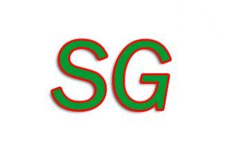 SG Export Kanpur Uttar Pradesh India