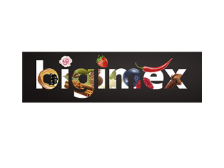 Bigimex Trading