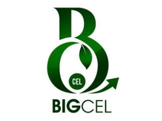 Bigcel Lagos Nigeria