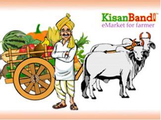 Kisan Bandi Vijayapura Karnataka India